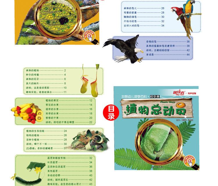 198幼儿探索百科综合卷(标准版)-2_10