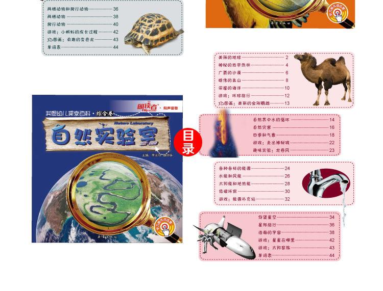 198幼儿探索百科综合卷(标准版)-2_12